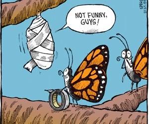 Come se la ridono gli amici!