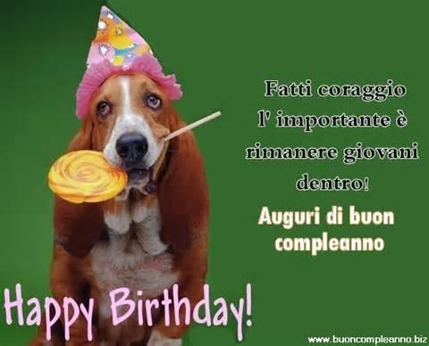 abbastanza immagine divertente di buon compleanno con un cane - Immagini  ME76