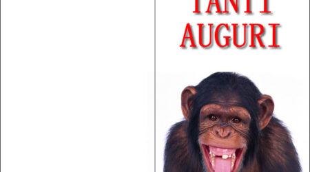 Immagine Divertente Buon Compleanno Scimmia Senza Denti Immagini