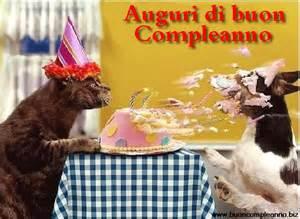 Immagini Divertenti Auguri Compleanno Cane E Gatto Immagini Divertenti