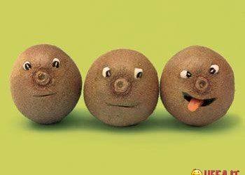 immagini divertenti e Immagini Divertenti Kiwi