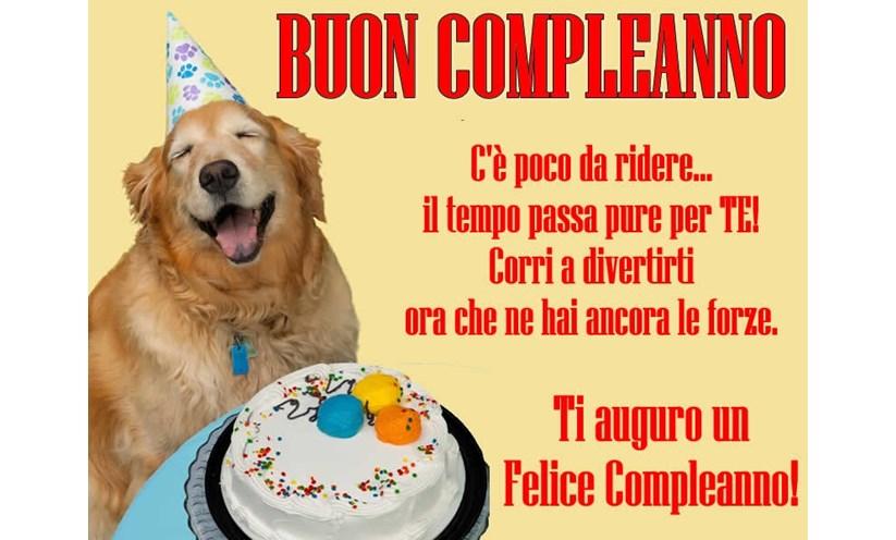 immagine divertente compleanno